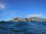 krustasea wanita Koleksi dilaut Sama Sampel, Wakatobi, Sulawesi, Indonesia