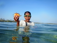 Sama Dilaut Woman Collecting Shellfish, Sampela, Wakatobi, Sulawesi, Indonesia